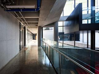 ADF Architects Modern schools Silver/Gold Metallic/Silver