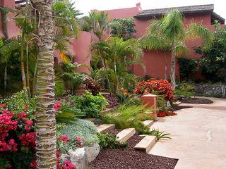 Estudio de paisajismo 2R PAISAJE Tropical style garden