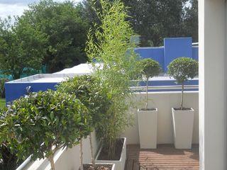Balcones Aromáticos Estudio Nicolas Pierry: Diseño en Arquitectura de Paisajes & Jardines Balcones y terrazas asiáticos
