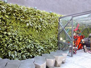 Quadro Vivo Urban Garden Roof & Vertical Oficinas y tiendas de estilo moderno