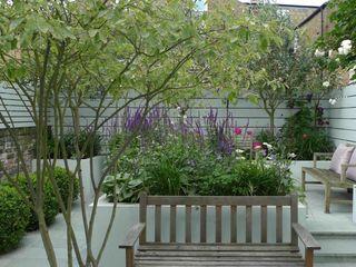 Small urban garden Ruth Willmott Modern garden