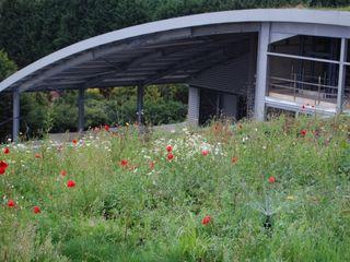 Kanes Foods Salad Factory Sky Garden Ltd Commercial Spaces
