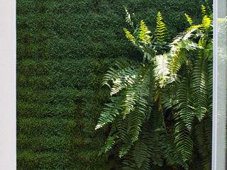 DF ARQUITECTOS 모던스타일 정원