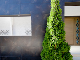 IPUNTO INTERIORISMO Walls