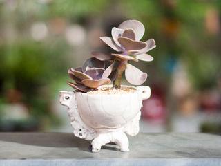 Ateliê de Cerâmica - Flavia Soares GartenBlumentöpfe und Vasen