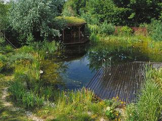 Architektura krajobrazu- naturalne systemy uzdatniania wod Сад в стиле модерн