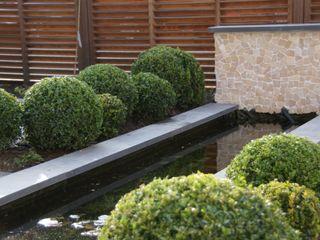 Loungetuin in Leiderdorp Ontwerpstudio Angela's Tuinen Moderne tuinen