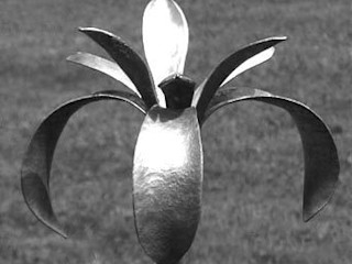 Iris Iron Vein Garden Accessories & decoration