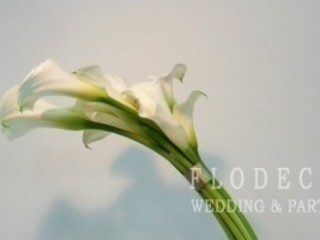 FLODECO Living roomAccessories & decoration