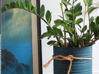 Pomelo Binnenbeplanting