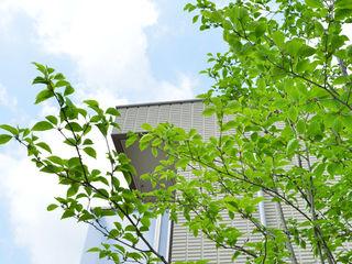 T's Garden Square Co.,Ltd. Jardines de estilo asiático