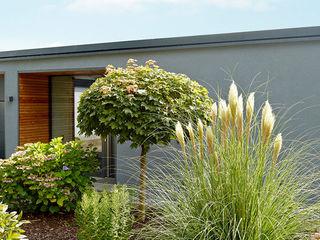 Elegante Sachlichkeit - energetische Sanierung eines Einfamilienhauses mit Balkon insa4 ingenieure sachverständige architekten Moderne Häuser