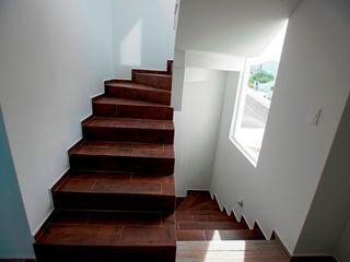 JF ARQUITECTOS Corridor, hallway & stairsStairs Wood effect