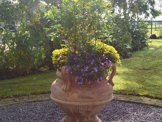 Toscan garden at home Terrecotte Europe Balconies, verandas & terraces Accessories & decoration Pottery Brown