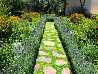 Jardin de Flores Terra Jardines modernos: Ideas, imágenes y decoración