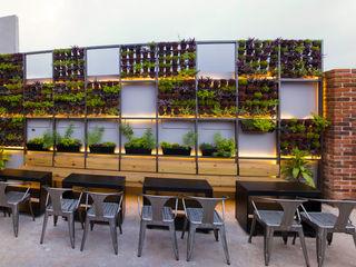 Muro verde Taller La Semilla Bares y clubs de estilo tropical