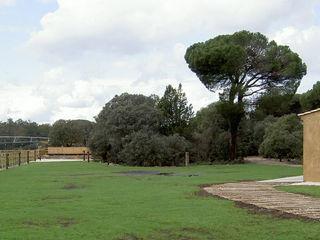 Finca de recreo Montebayón Ignacio Quemada Arquitectos Jardines de estilo moderno Beige