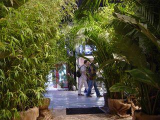 Raumobjekte floral Haedi-Flor Meisterbetrieb Geschäftsräume & Stores Grün
