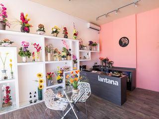 Florería Lantana Taller La Semilla Oficinas y tiendas