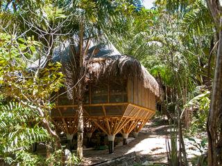IR arquitectura Escritórios tropicais Bambu Acabamento em madeira