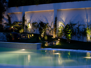 Visual Stimuli Tropikal Bahçe