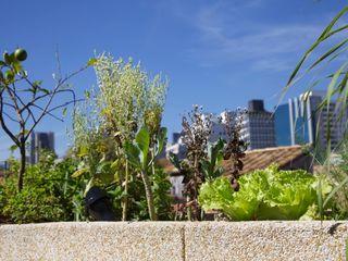Ecoeficientes Balcone, Veranda & Terrazza in stile rurale