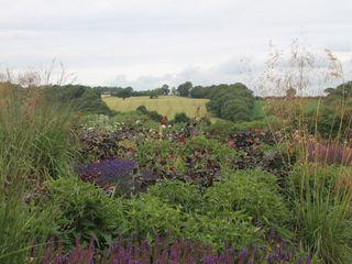 Feng Shui Garden Bestall & Co Landscape Design Ltd Modern Garden