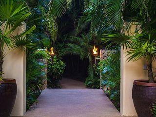 BR ARQUITECTOS Сад в тропическом стиле