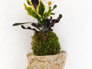 Julie Martin JardinesAccesorios y decoración