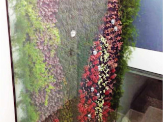 LC Vertical Gardens GartenPflanzen und Blumen