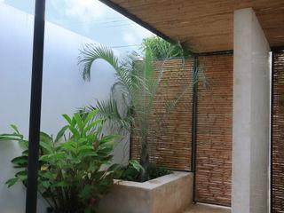 FGO Arquitectura Tropikal Bahçe Bambu Sarı
