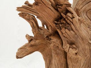 legno di ulivo Radice In Movimento Sala da pranzoTavoli