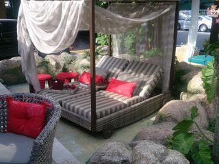 Studio HG Arquitetura Tropical style windows & doors