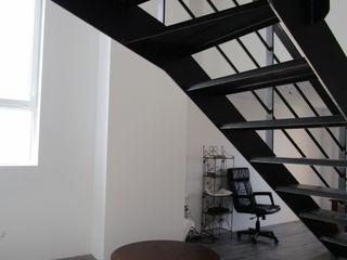 Paula Bianco Nowoczesny salon
