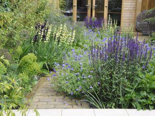Chiswick town garden Arthur Road Landscapes Modern Garden