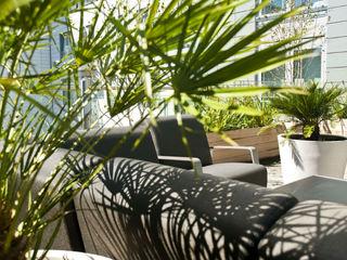 London Roof Terrace Arthur Road Landscapes Modern Garden