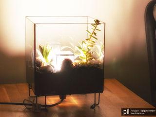 Terrarium Lighting Pil Tasarım Mimarlik + Peyzaj Mimarligi + Ic Mimarlik CasaAcessórios e Decoração Vidro Transparente