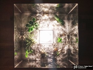 Terrarium Lighting Pil Tasarım Mimarlik + Peyzaj Mimarligi + Ic Mimarlik Sala de estarIluminação Vidro Transparente