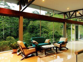 Artek sas Living room Glass Green