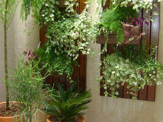 MC3 Arquitetura . Paisagismo . Interiores Country style conservatory