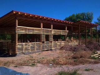 bioma arquitectos asociados Country style houses Bamboo Beige