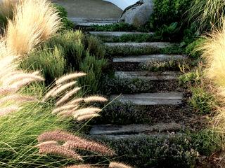Banco ondulado com vista ao campo Atelier Jardins do Sul Jardins ecléticos