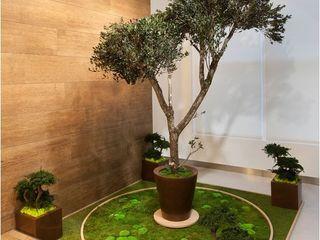 Monamour Natural Design Edificios de oficinas
