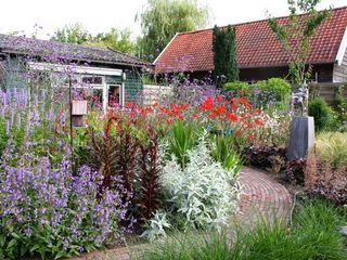 Kleurrijke achtertuin Carla Wilhelm Landelijke tuinen