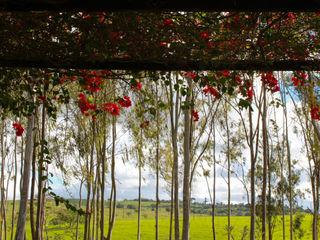 Fazenda Santa Izabel LM Arquitetura | Conceito Jardins campestres Verde