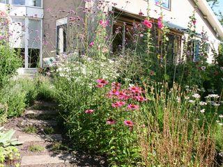 Weelderige border in cottagestijl Carla Wilhelm Landelijke tuinen