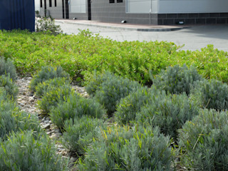 Zonas verdes em clínica Atelier Jardins do Sul Jardins ecléticos