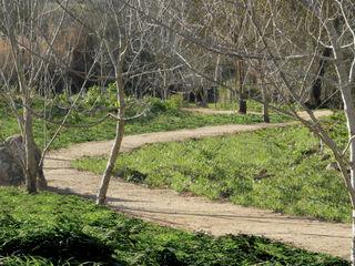 Percurso ao longo de quinta Atelier Jardins do Sul Jardins ecléticos
