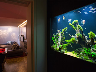 Kowloon Abode Aquarium Architecture Modern Corridor, Hallway and Staircase