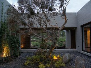 AMR ARQUITECTOS Modern Garden